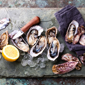 oyster and foodie festivals